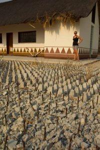 Rebar Spike Field To Keep Elephants From Destroying Washroom