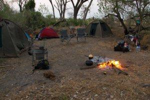 Simple Island Bush Camp Okavango Delta Botswana