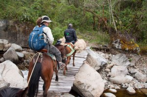 Traveling by horse to the Colibri Del Sol (Dusky Starfrontlet Hummingbird) Reserve