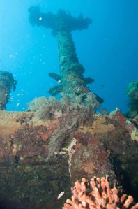 Wreck of the Atun Maru, one of more than fifty large Japanese ship sunk by Allied bombing and now at the bottom of Simpson Harbor, Rabaul