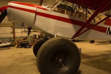 Piper Cub Tundra Tires1